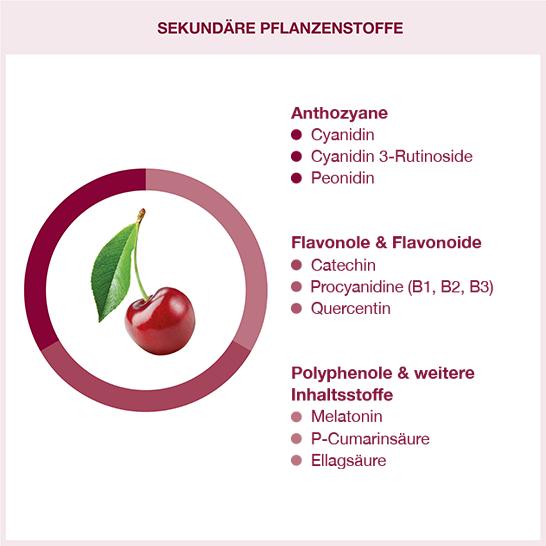 Sekundäre Pflanzenstoffe in Montmorency Sauerkirschen